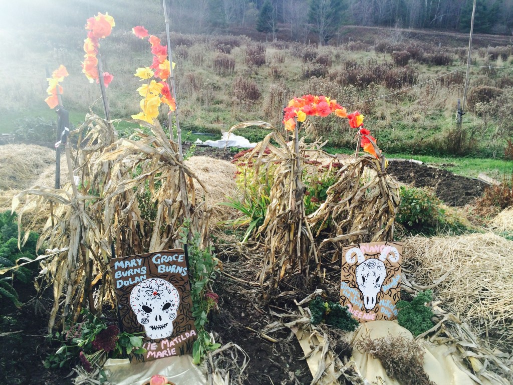 M.O.E.L. Day of the Dead altars